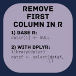 how you remove first column in R