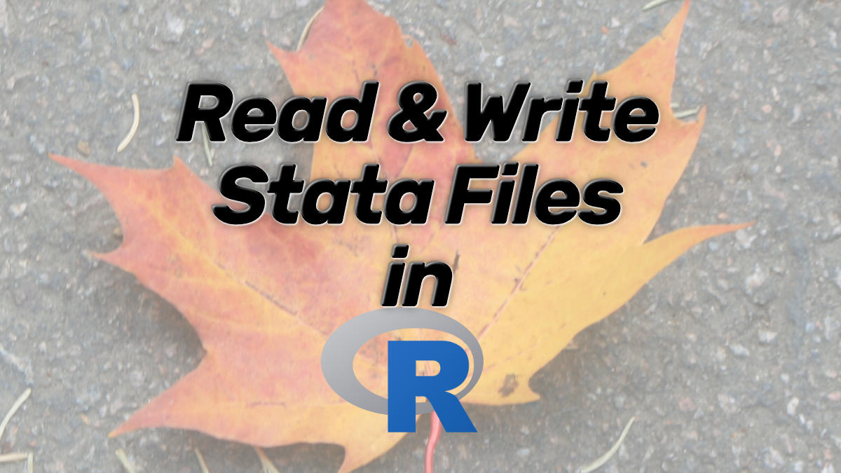 How to Read and Write Stata (.dta) Files in R with Haven