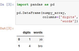 how to convert numpy array to pandas dataframe code example