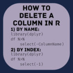 How to remove a column by name and index in R