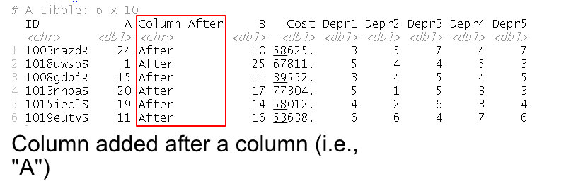 Dataframe with column added after another column in R