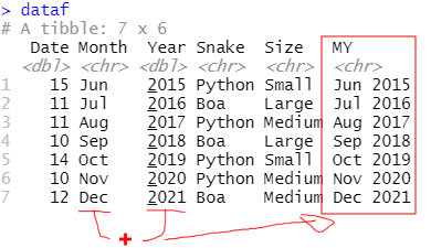 Two columns concatenated in R